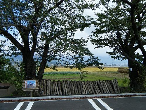 s-DSCF9146.jpg