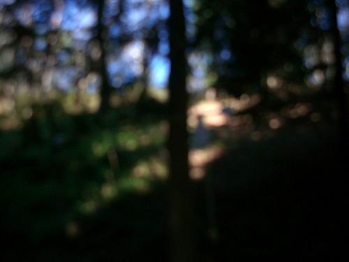 s-CIMG0052.jpg
